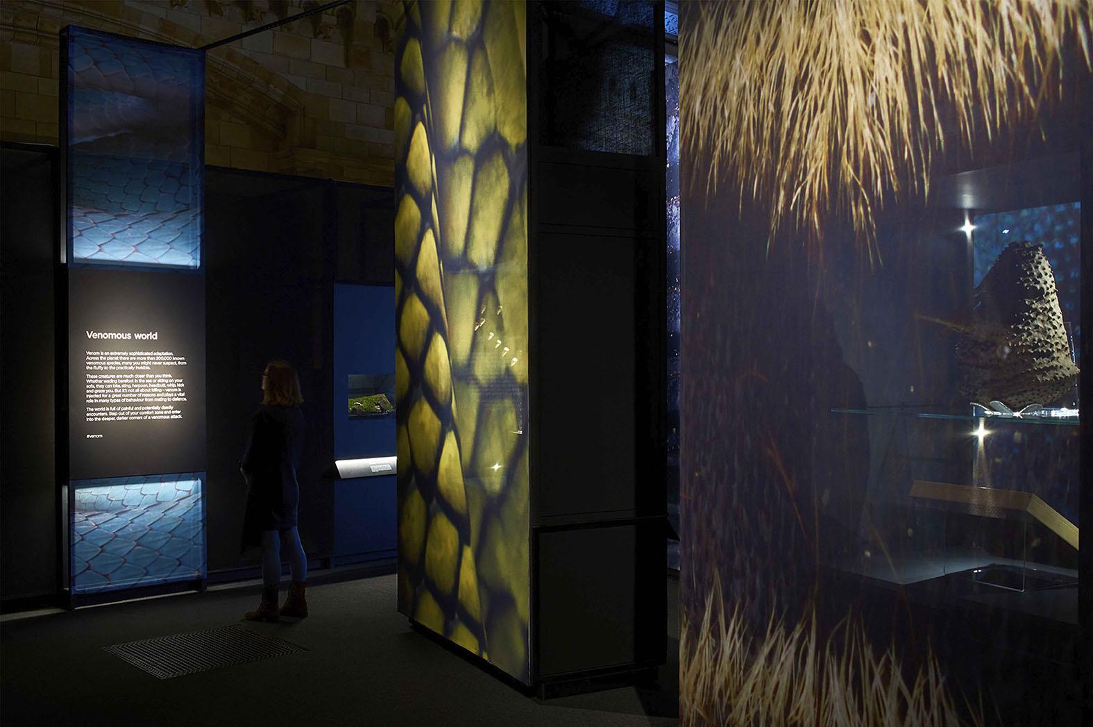 02_Lombaert_Studio_Natural_History_Museum_Venom_03