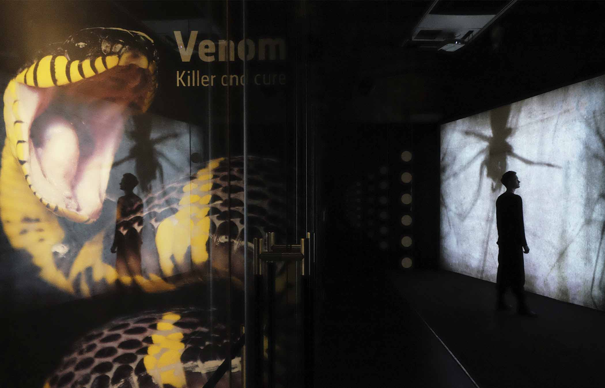Natural History Museum, London Venom: Killer and Cure